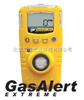 GAXT加拿大BW氧气检测仪