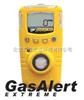 GAXT硫化氢检测仪
