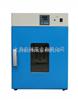 DHG250℃系列立式鼓风干燥箱 鼓风干燥箱 上海干燥箱 250℃立式干燥箱