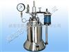实验室电加热高温反应釜