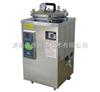 BXM-30R(原型号YXQ-LS-30SII)立式压力蒸汽灭菌器 BXM-30R(原型号YXQ-LS-30SII)