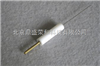 DS-Pt005铂丝电极