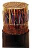 450/750V塑料绝缘控制电缆 KM ZR-KVVP22