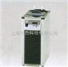 CCA-1111 低温循环泵(500瓦)